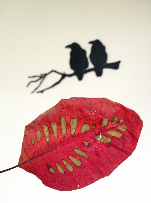 leafandraven